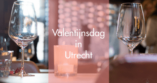 Valentine_header_ned